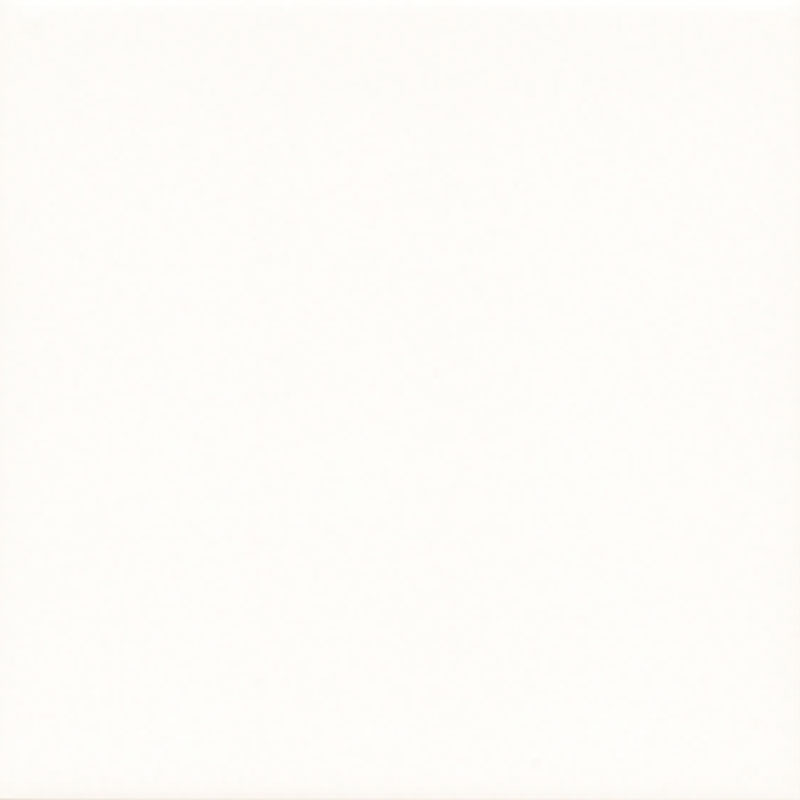 Fabresa Bevelled Blanco 20x20