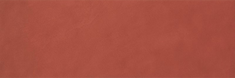 Fap Color Line Marsala 25x75